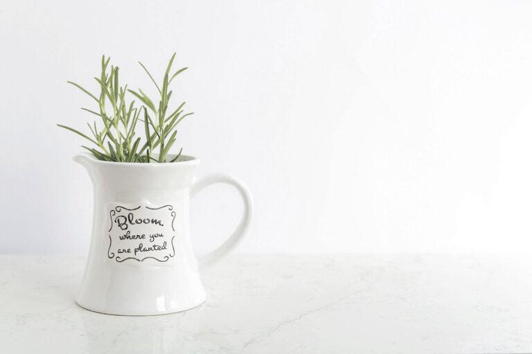 Tazza bianca con scritta in bloom e rosmarino verde contattami bloomie